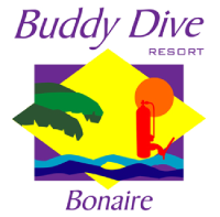 Buddy Dive